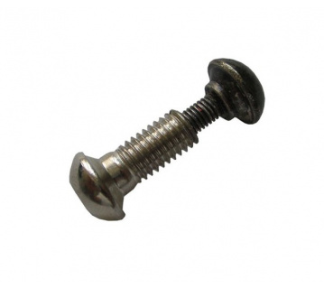 Screw 19mm